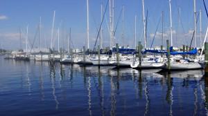 Tampa Waterfront Community